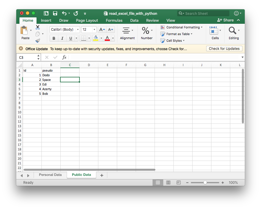 How to read a microsoft excel file using python ?